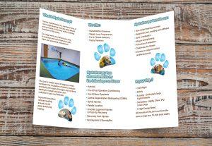 paddle paws leaflet