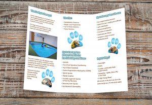 Paddlepaws trifold leaflet